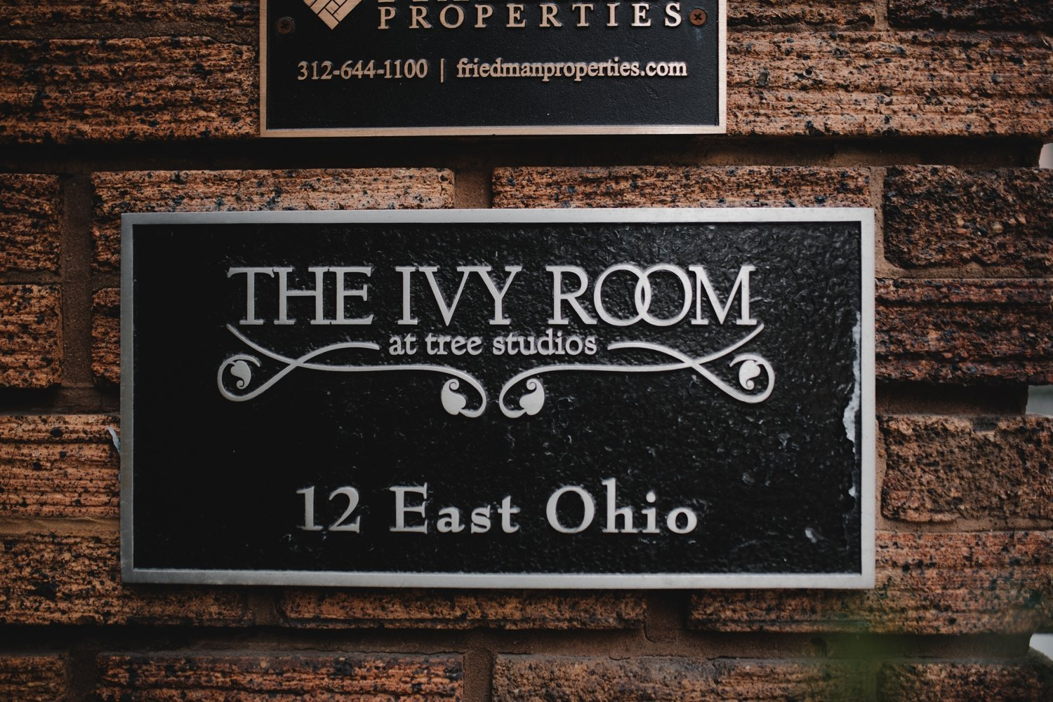 The Ivy Room Chicago Wedding. The Adamkovi. Unique wedding photographer Chicago. Dark and Moody Photographer Chicago. the best chicago wedding photographer
